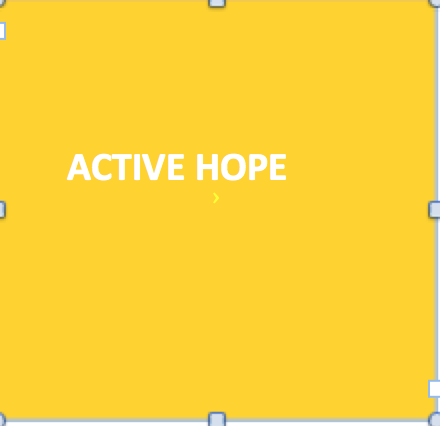 Active Hope (Source: Joanna Macy)